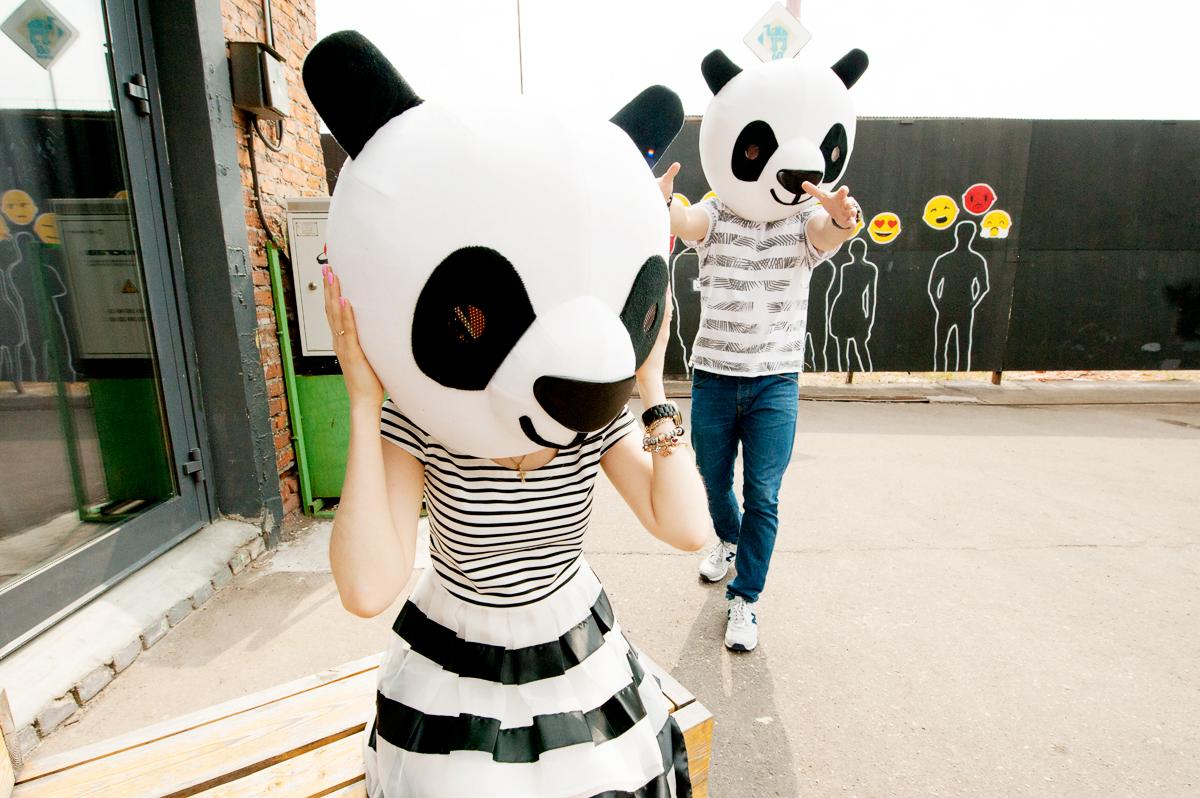 милые панды в лавстори